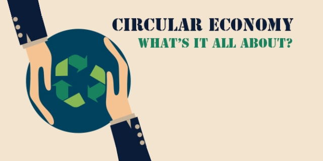 Moving Towards the Circular Economy: Irish Case Studies