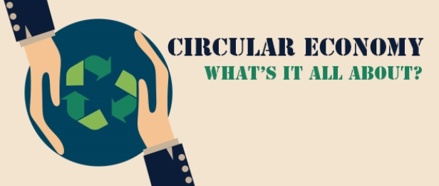 Moving Towards the Circular Economy in Ireland