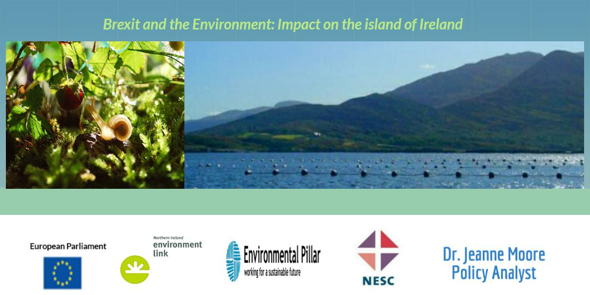 NESC's Dr. Jeanne Moore chairs session 1 of Brexit: Implications for the Environment on the island of Ireland