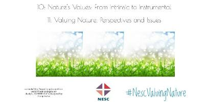 Valuing Nature: Perspectives and Issues