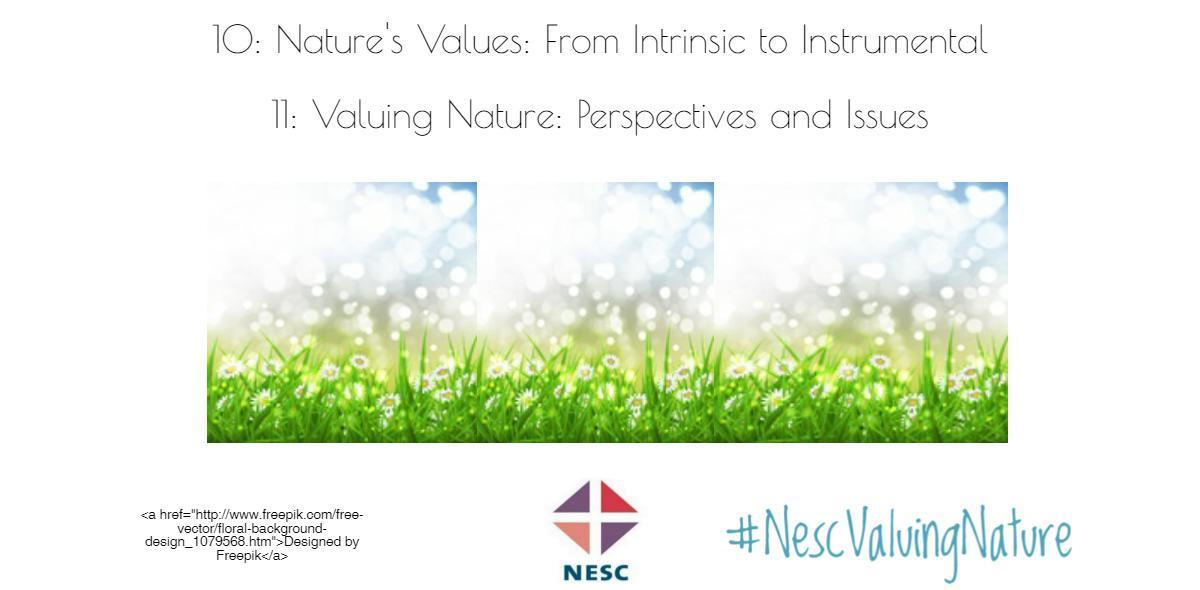 NESC publishes research series Nature's Values: From Intrinsic to Instrumental and Valuing Nature: Perspective and Issues